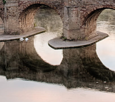 The center arches of the old bridge with swans in view